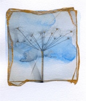 nicola-coe-seedhead-mixed-media-12x15cms