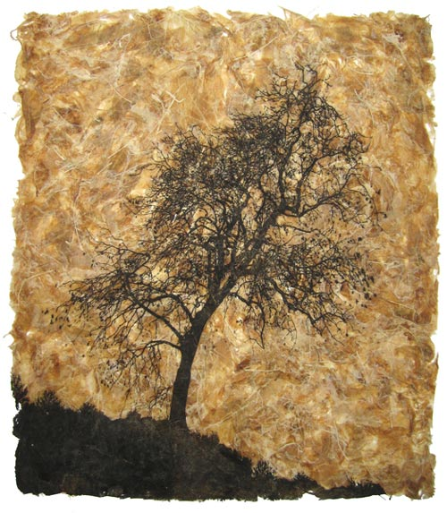 fraxinus-excelsior-tree-etching-janetfrench-emmabuckmaster