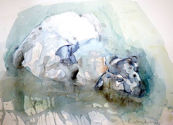 Ruth McCabe, Tired ewe, watercolour on paper