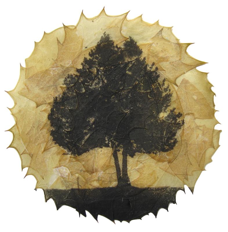 buckmaster-french-ilex-aquifolium-etching-on-holly-leaves