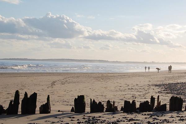 beach-walberswick-suffolk