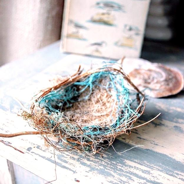 nicola-coe-nest