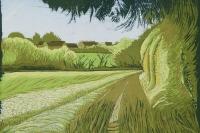 helen-dougall-barley-fields-walsham-le-willows